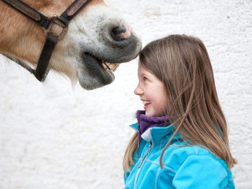 Pferde Sind Mehr Als Gute Freunde - Foto: (c) Zlatan Durakovic - Fotolia.com
